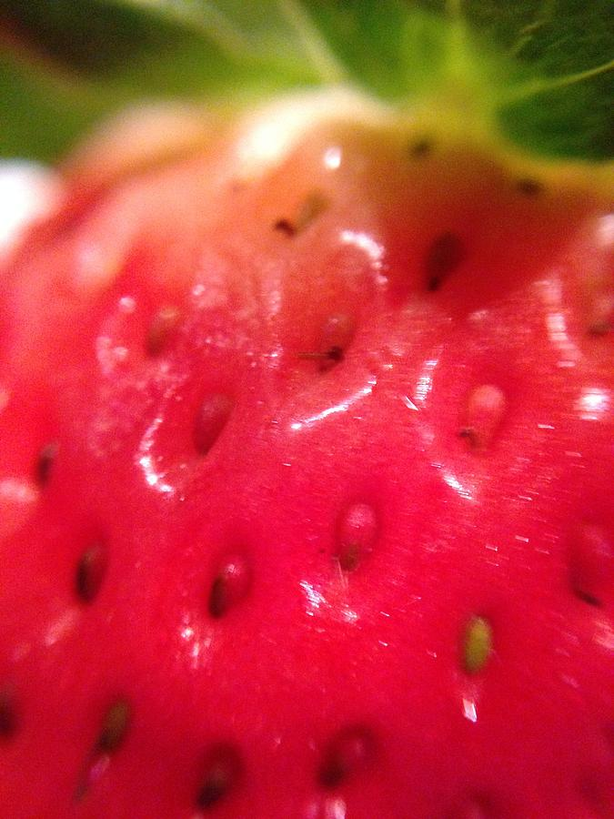 Strawberries Photograph - Strawberry Delight by Marian Palucci-Lonzetta