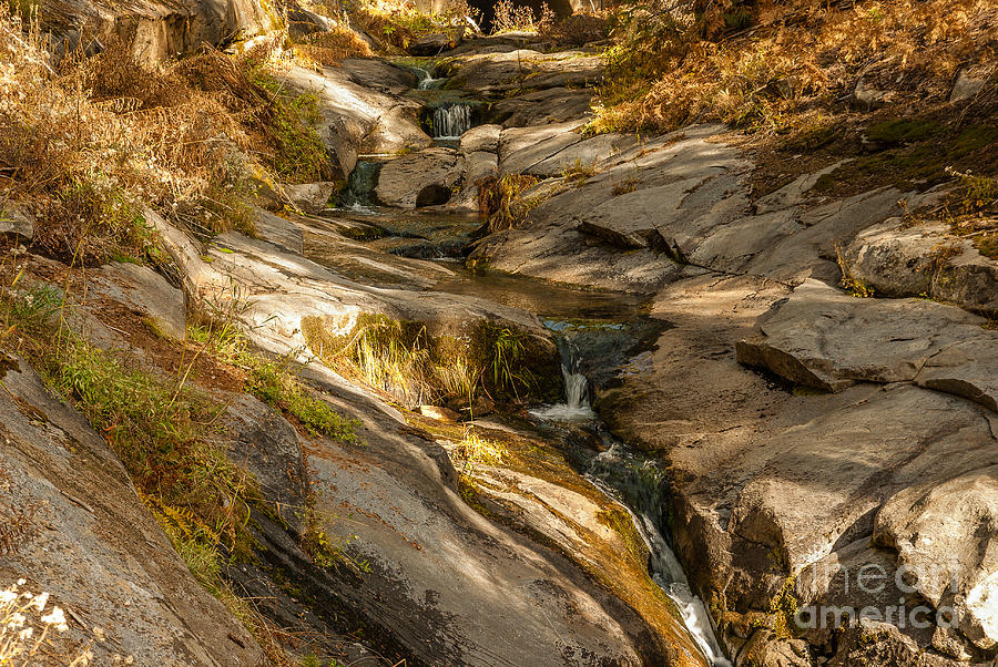Sequoia National Park Photograph - Stream In The Sierras  1-7828 by Stephen Parker