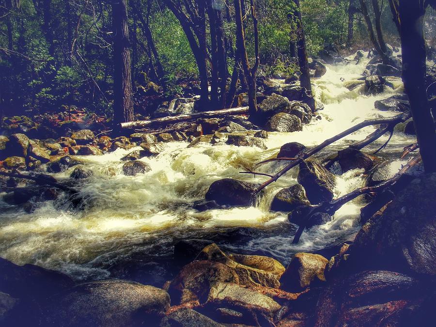 River Photograph - Stream Of Consciousness- Yosemite by Laura Mazzuca