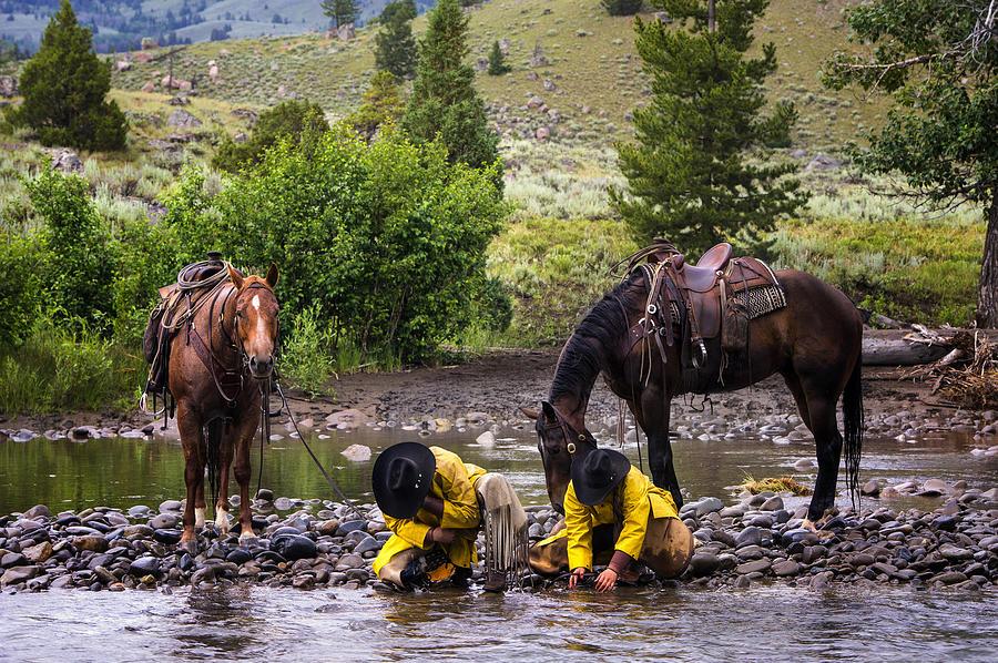 Horse Photograph - Streamside by Pamela Steege