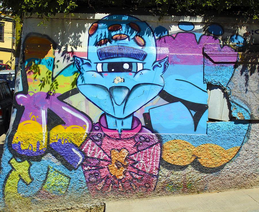 Urban Photograph - Street Art Valparaiso Chile 9 by Kurt Van Wagner