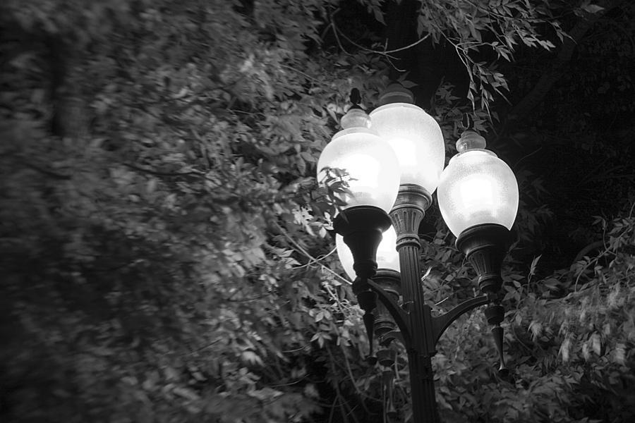 Street Light Photograph - Street Light by David Halter