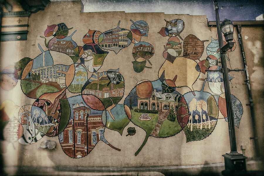 City Photograph - Street Wall In Fort Collins by Lijie Zhou