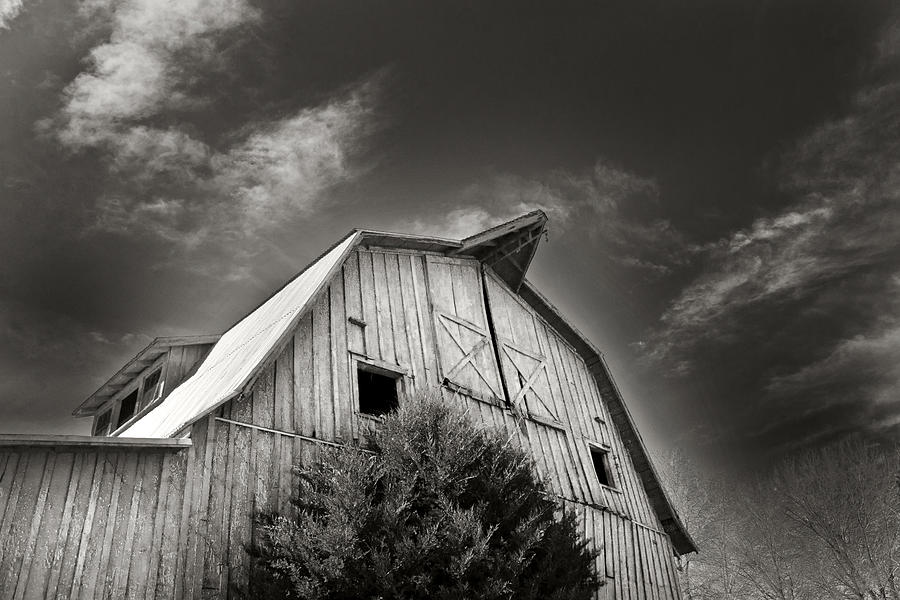 Barn Photograph - Strength Of Character by Tanya Jacobson-Smith