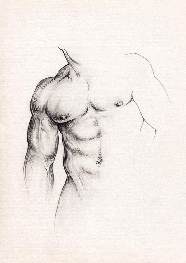 Nude Drawing - Strength by Rudy Nagel
