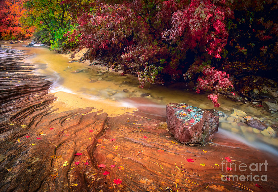 America Photograph - Striated Creek by Inge Johnsson
