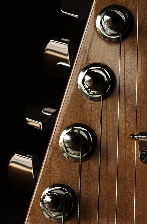 Guitar Photograph - Strings Wrapped by Karol Livote