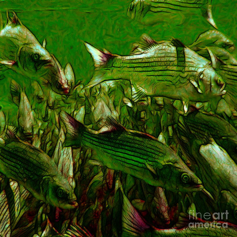 Florida Photograph - Striped Bass - Painterly V2 - Square by Wingsdomain Art and Photography