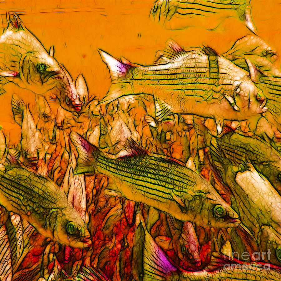 Florida Photograph - Striped Bass - Square by Wingsdomain Art and Photography