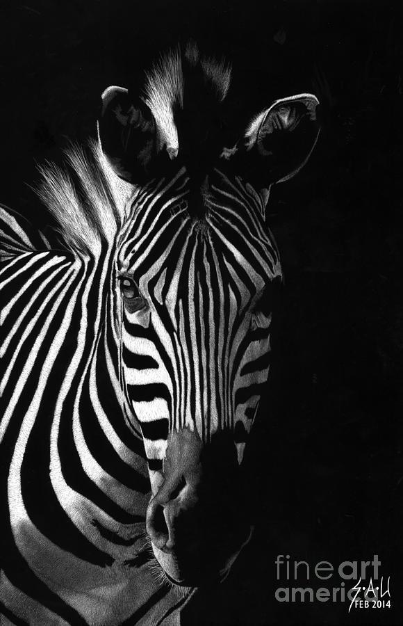 Striped Beauty by Sheryl Unwin