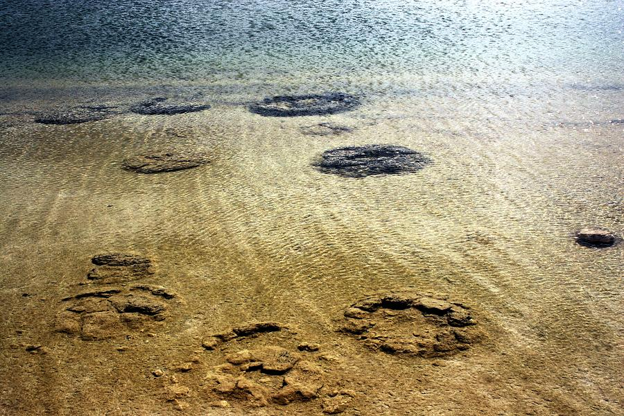 Stromatelite Rings in Western Australia by David Rich