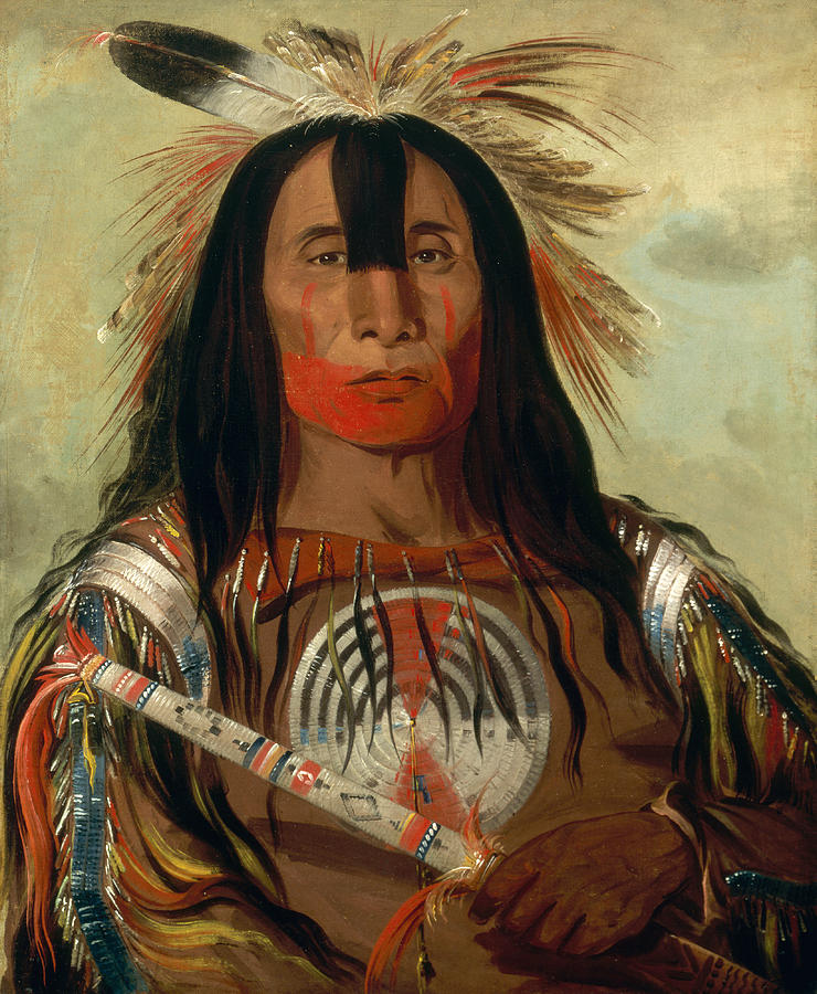 George Catlin Painting - Stu-mick-o-sucks. Buffalo Bulls Back Fat. Head Chief. Blood Tribe by George Catlin