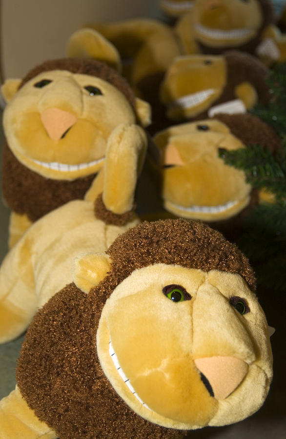 Stuffed Lions Photograph - Stuffed Lions by Bob Pardue