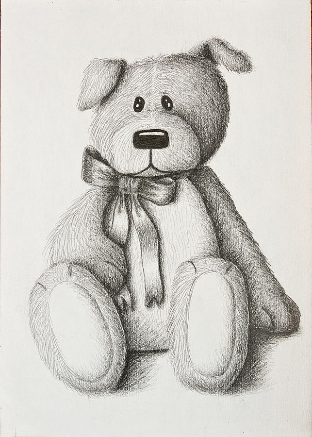 Pencil Drawing - Stuffed Toy Dog by Jeanette K