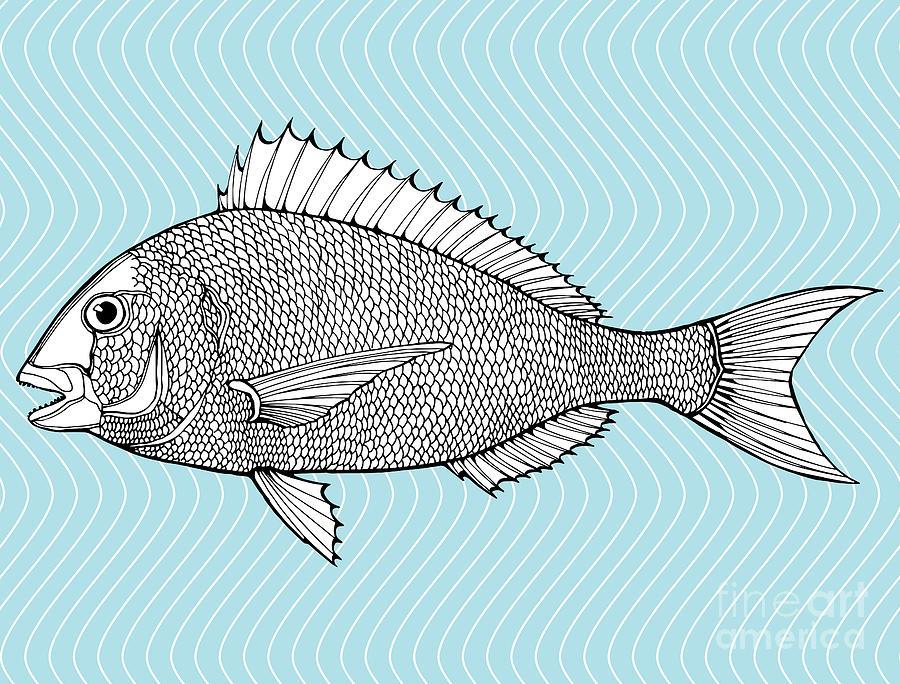 Symbol Digital Art - Stylized Fish. Sea Fish. Dorado. Black by In Art