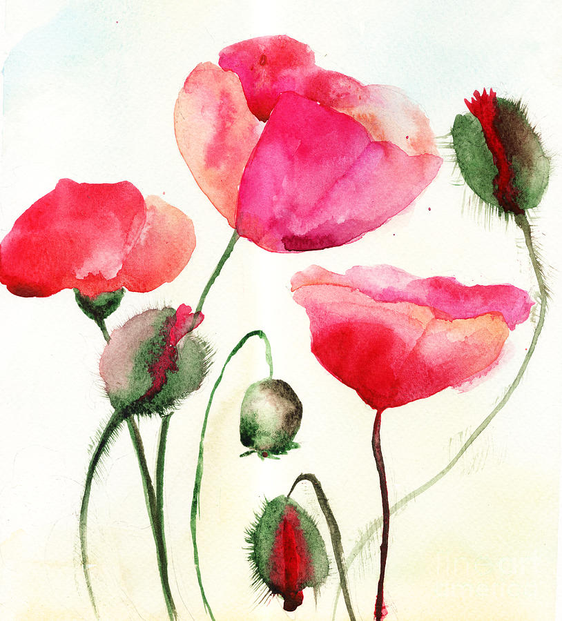 Stylized poppy flowers illustration painting by regina jershova backdrop painting stylized poppy flowers illustration by regina jershova mightylinksfo Image collections