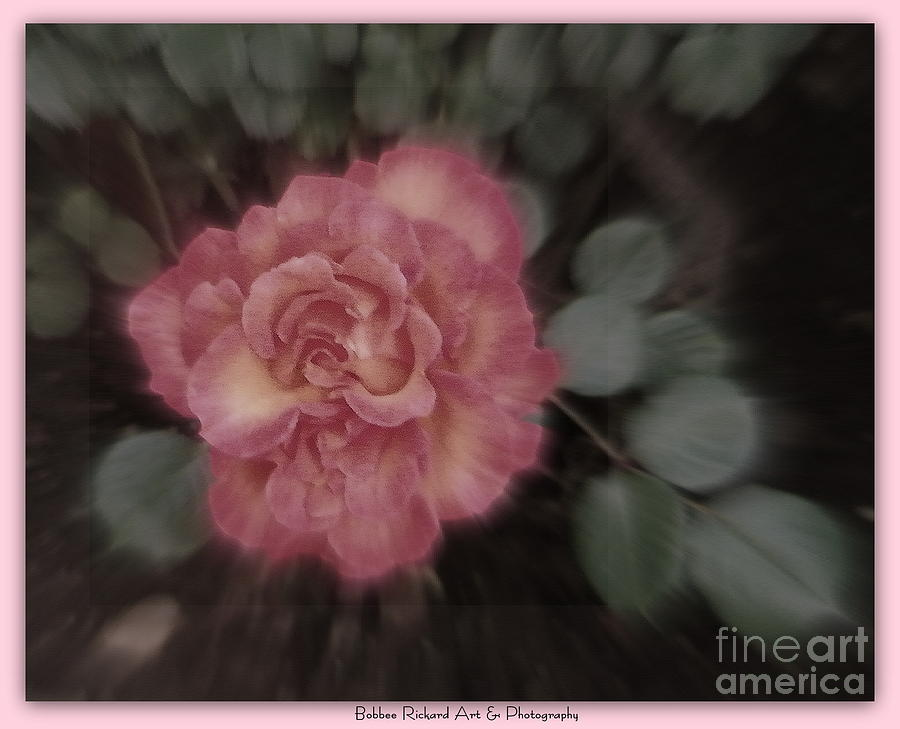 Rose Photograph - Subliminal by Bobbee Rickard