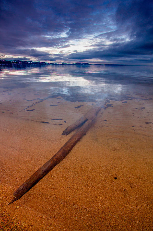 South Photograph - Submerged Log by Mike Lee