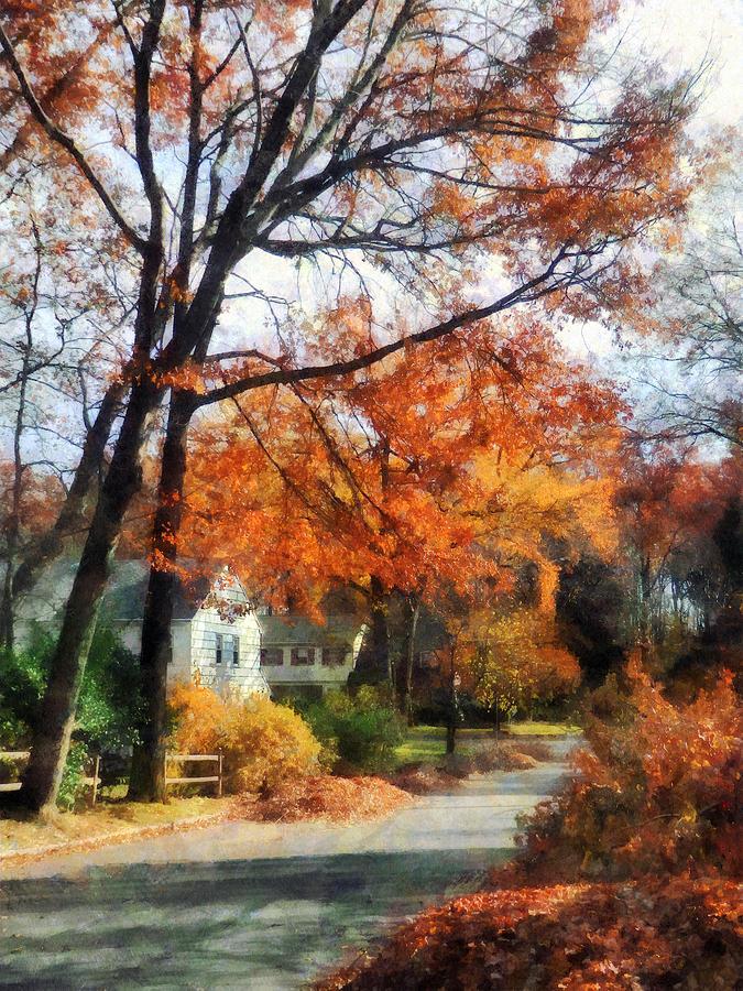 Street Photograph - Suburban Street In Autumn by Susan Savad