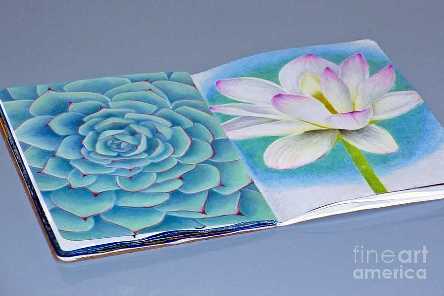 Sketchbook Drawing - Succulent And Lily by Laura Kayon