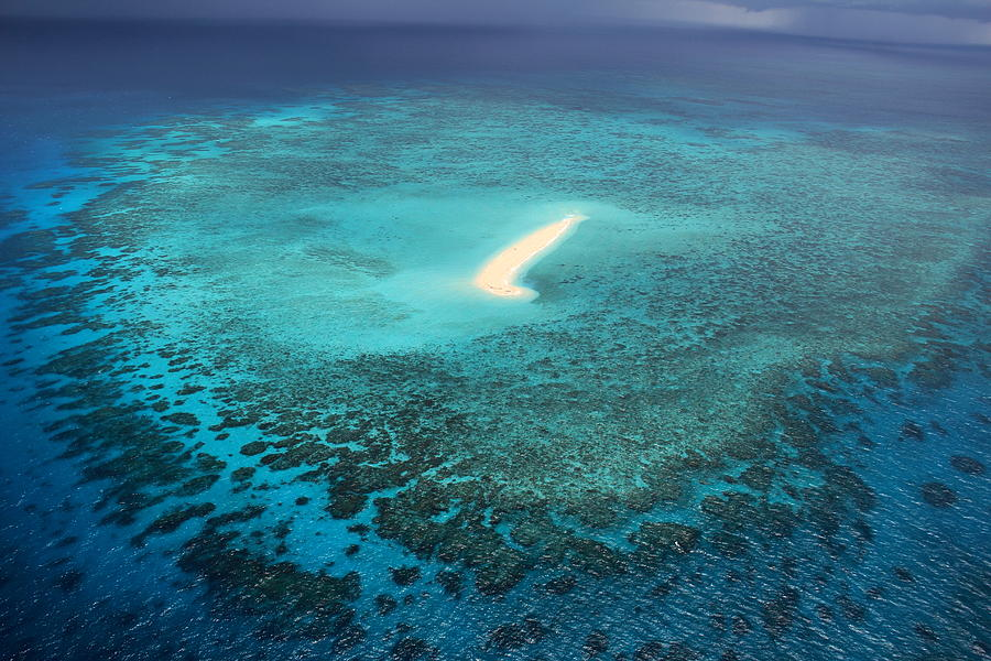 Great Barrier Reef Photograph - Sudbury Cay by Debbie Cundy