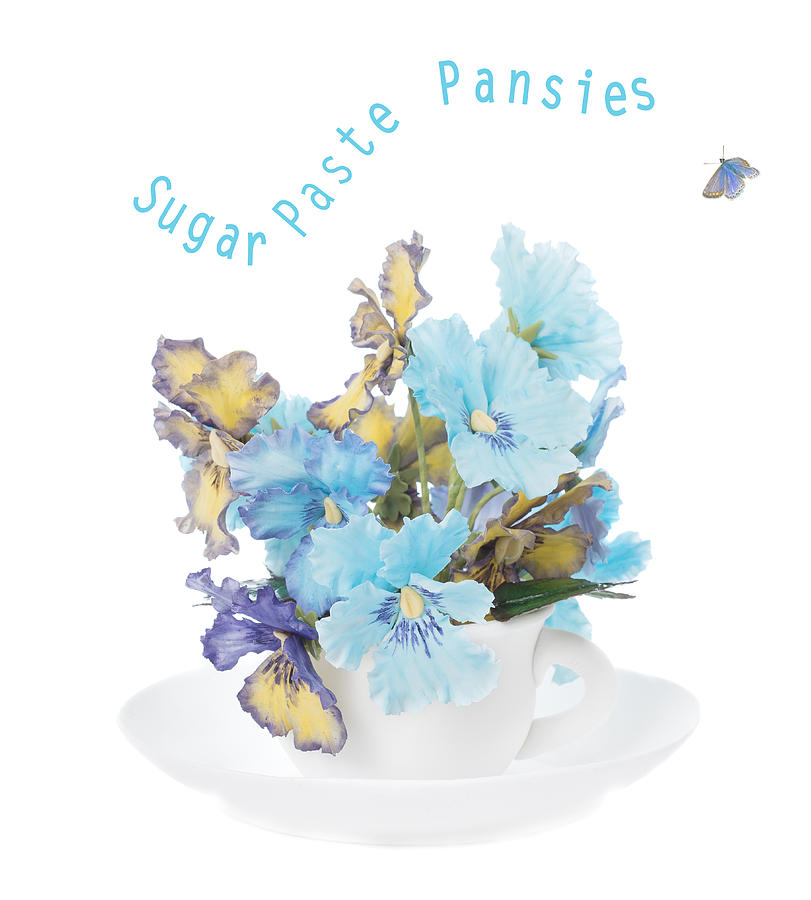 Cup Photograph - Sugar Paste Pansies by Amanda Elwell