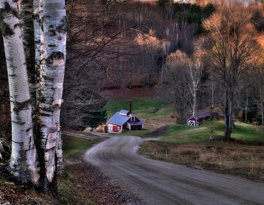 Scenic Landscape Photograph - Sugar Shack - Reading Vermont by Thomas Schoeller