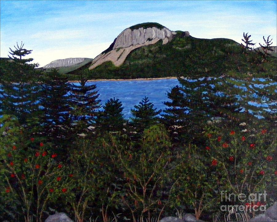 Sugarloaf Hill Painting - Sugarloaf Hill by Barbara Griffin