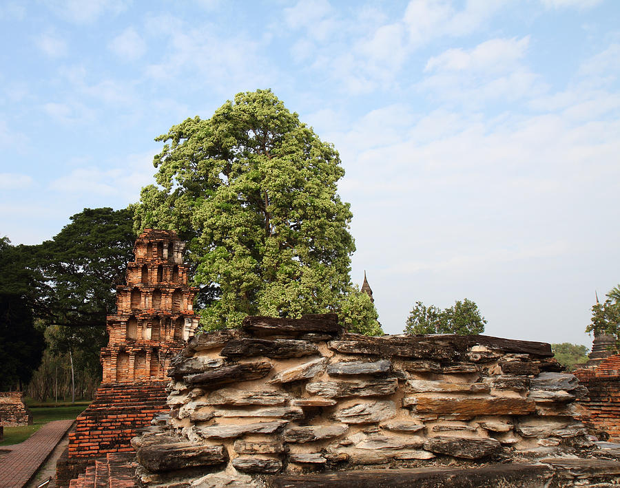 Sukhothai Photograph - Sukhothai Historical Park - Sukhothai Thailand - 011311 by DC Photographer