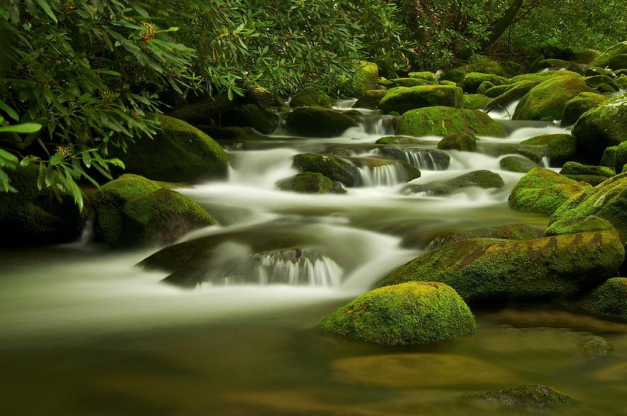 Smoky Mountains Photograph - Summer Along The Roaring Fork by Keith Nicodemus