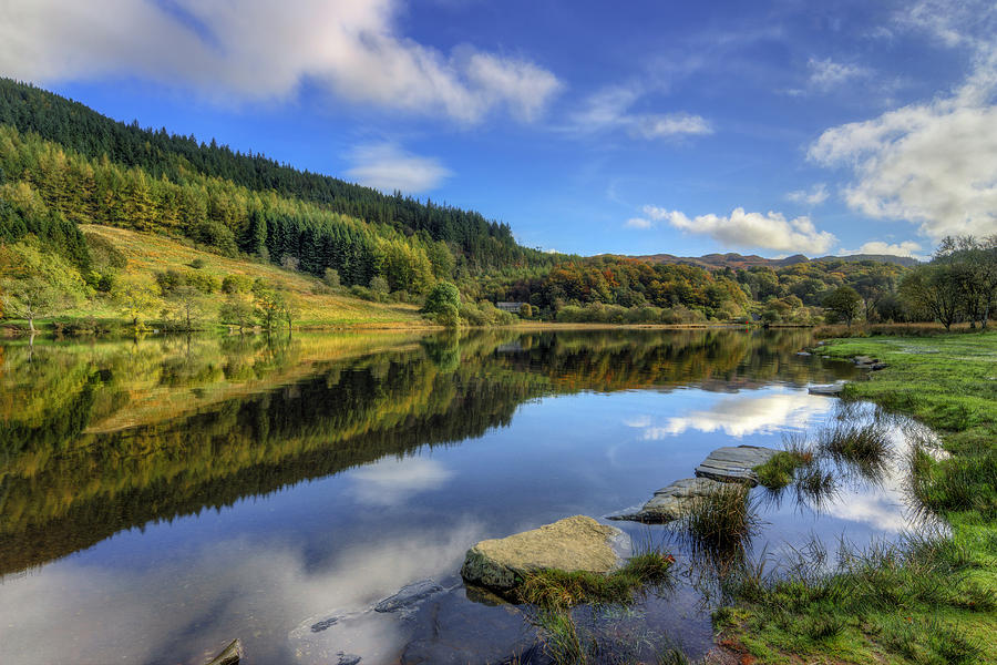 Lake Photograph - Summer At The Lake by Ian Mitchell