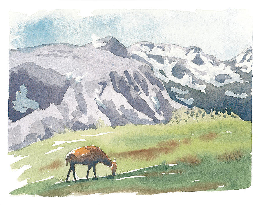 Estes Park Painting - Summer At Twelve Thousand Feet by Christine Camp