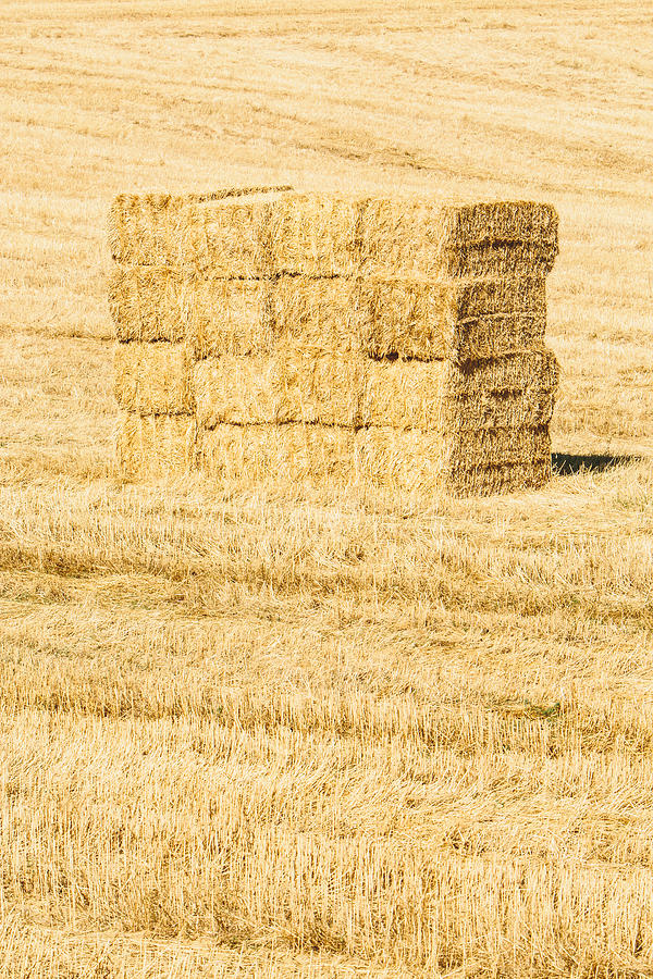 Italy Photograph - Summer Bales by Clint Brewer