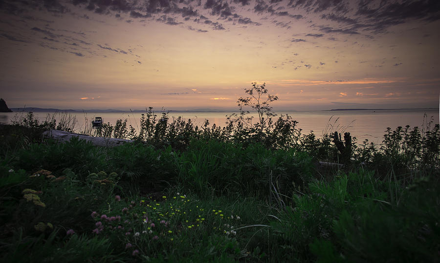 Washington Photograph - Summer Behind Us by Blanca Braun