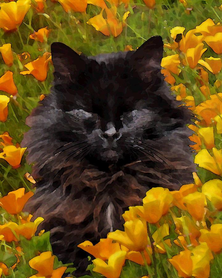 Catnap Digital Art - Summer Bliss by Iina Van Lawick