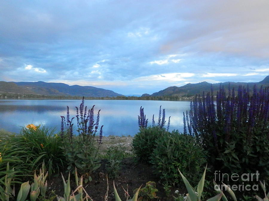 British Columbia Photograph - Summer Evening At Lake Osoyoos by Margaret McDermott