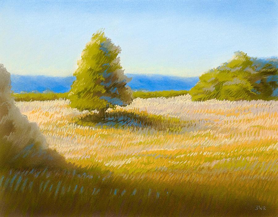 Landscape Pastel - Summer Field by Bruce Richardson