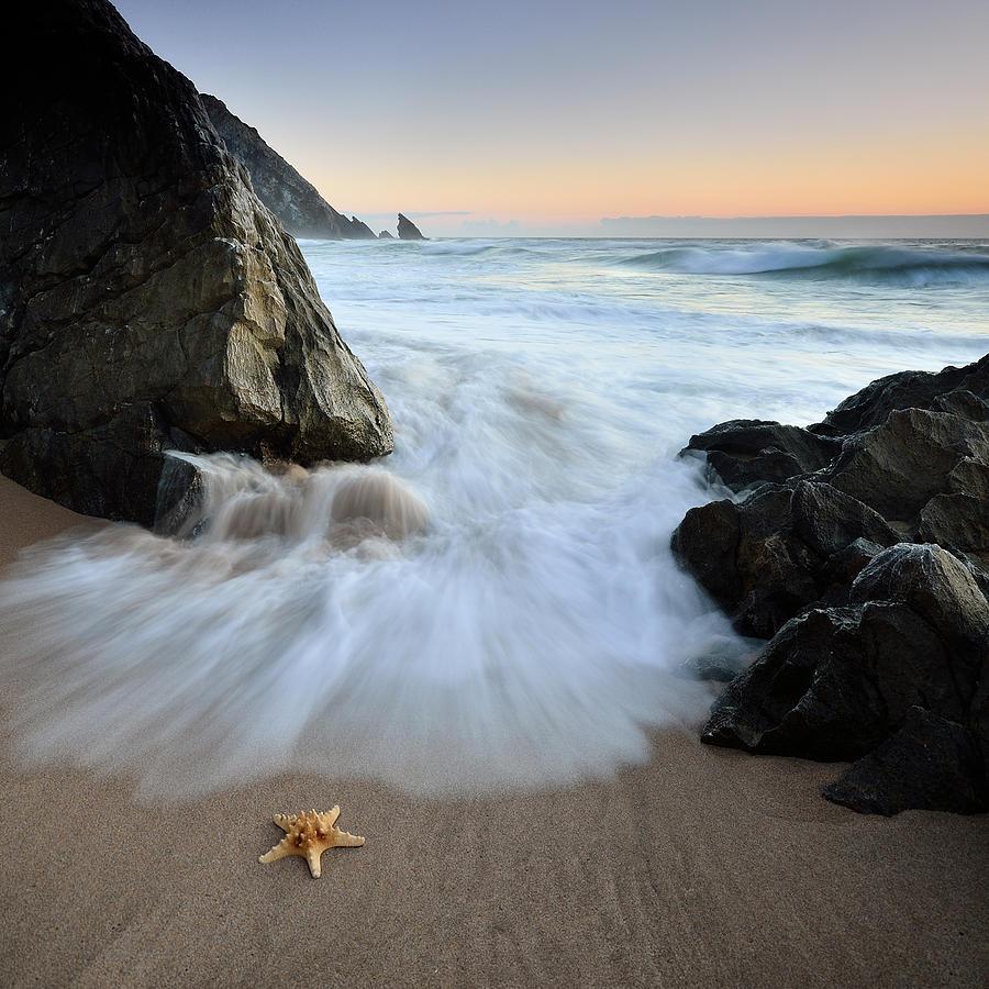 Landscape Photograph - Summer Flux by Paulo Dias
