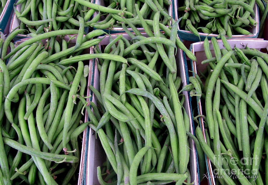 Kathie Mccurdy Photograph - Summer Green Beans by Kathie McCurdy