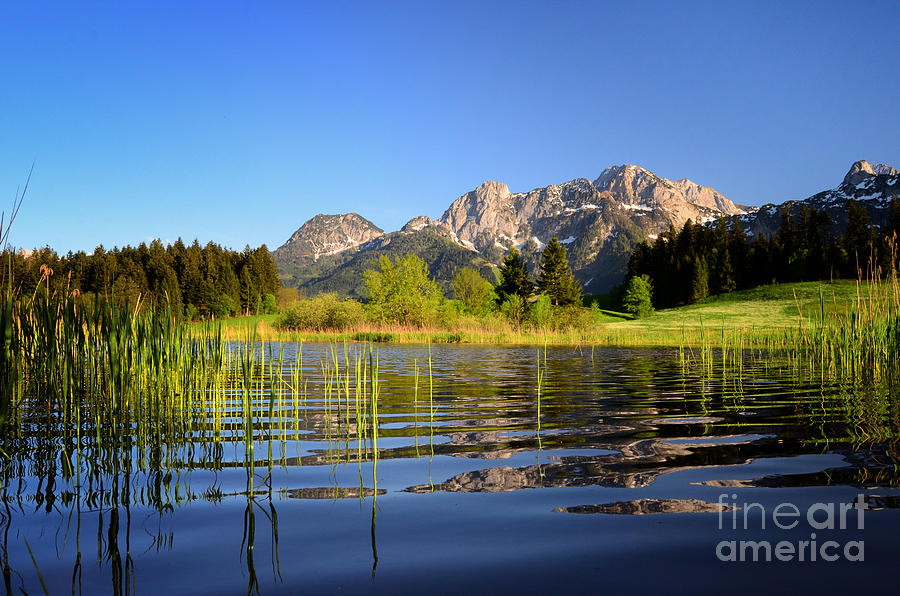 Summer Lake And Mountains Photograph