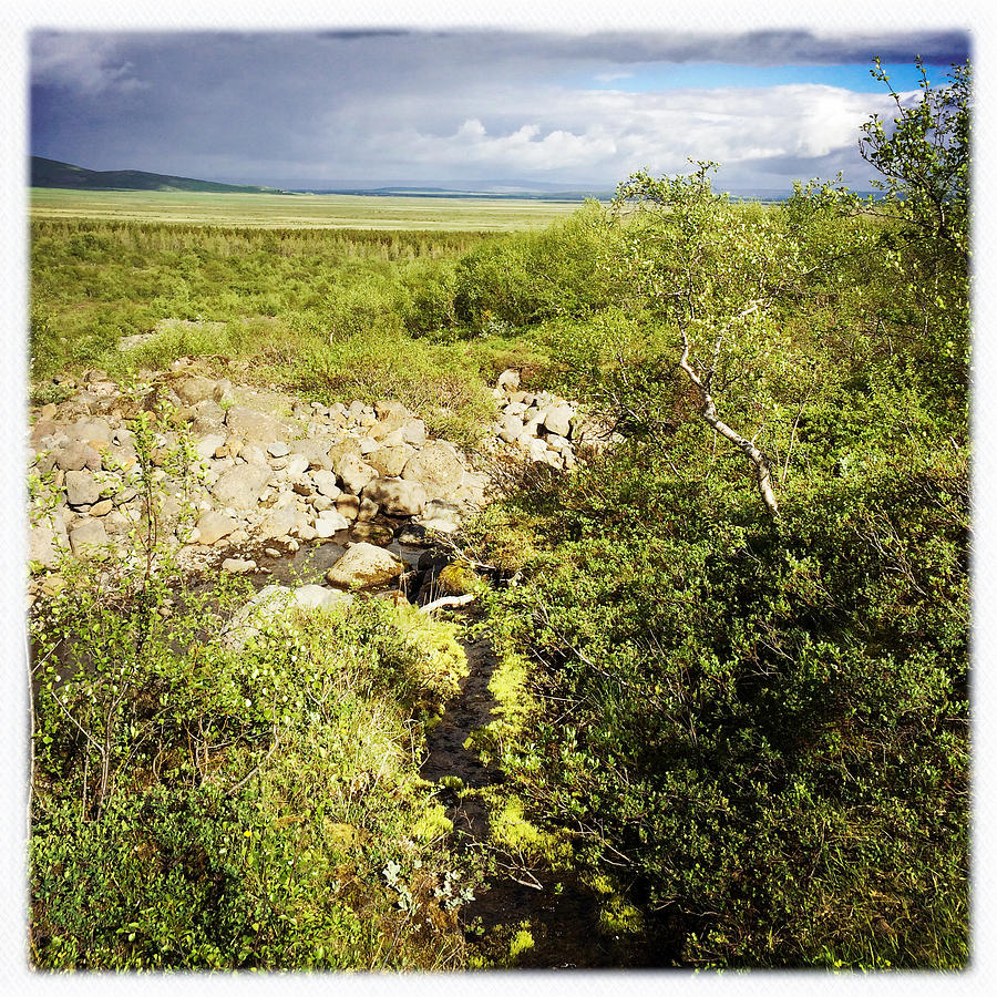Iceland Photograph - Summer landscape in Iceland by Matthias Hauser