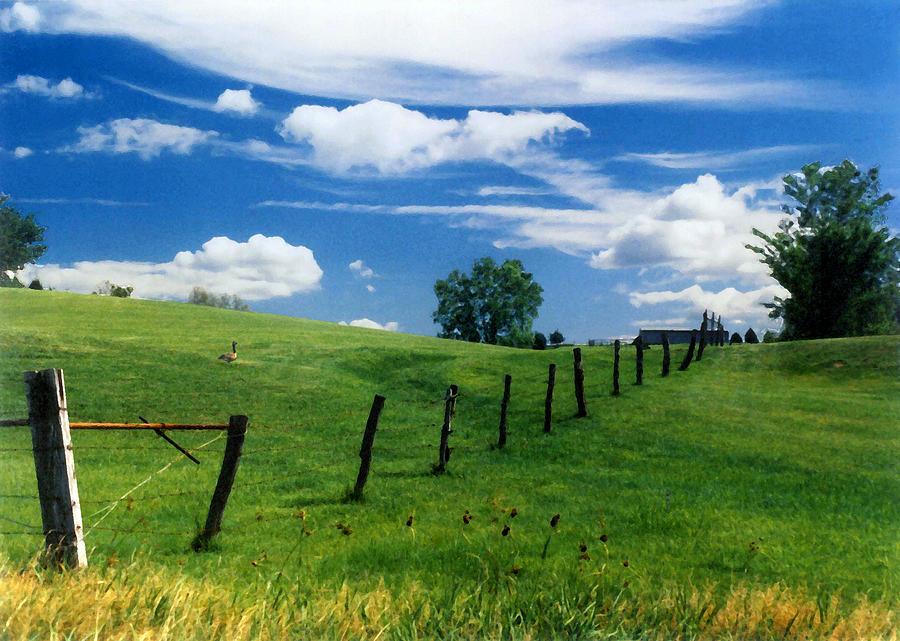 Summer Landscape Photograph - Summer Landscape by Steve Karol