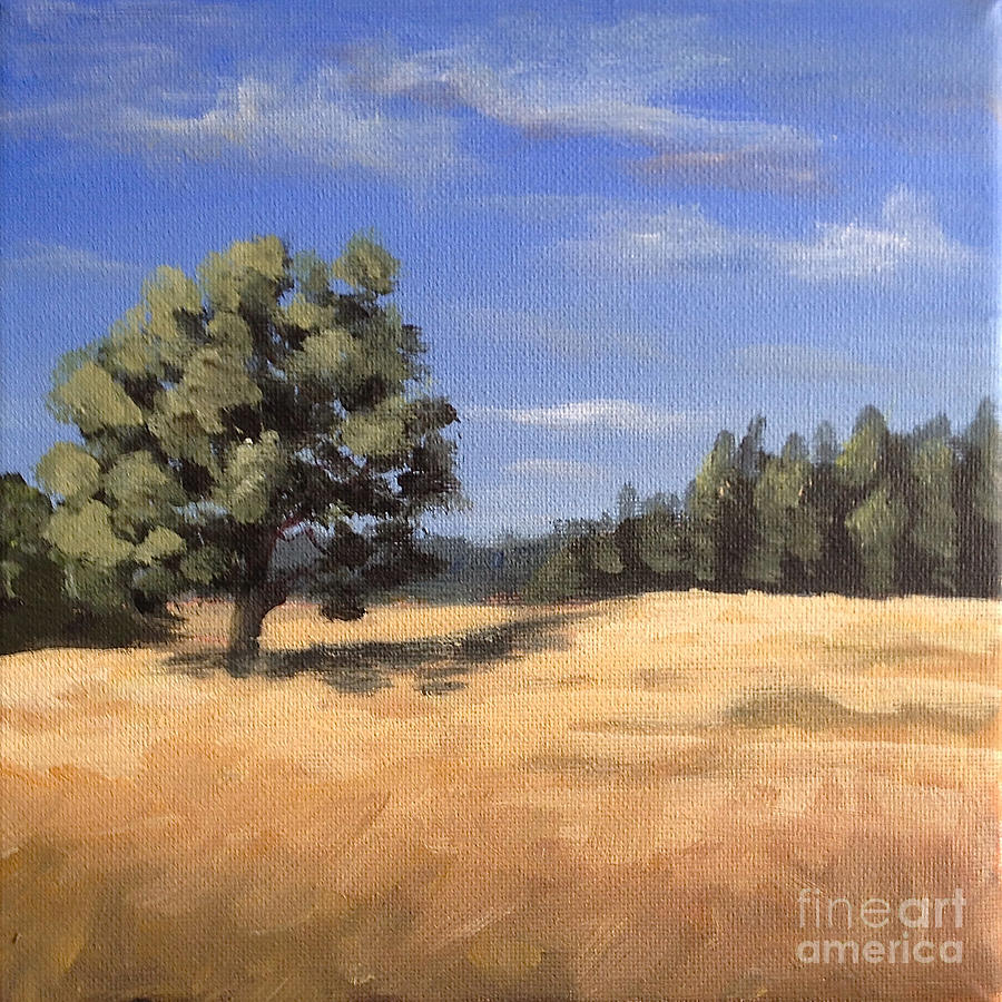 summer oak and wheat field by Ric Nagualero