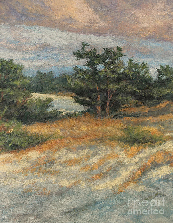 Summer Afternoon Painting - Summer Shadows - Provincetown by Gregory Arnett