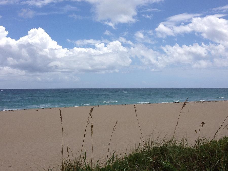 Beach Photograph - Summer Shore by Barbara Von Pagel