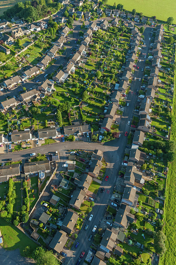 Summer Suburb Streets Homes Green Photograph by Fotovoyager