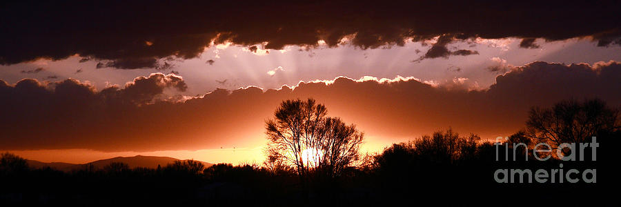 Landscape Photograph - Summer Sunset by Steven Reed