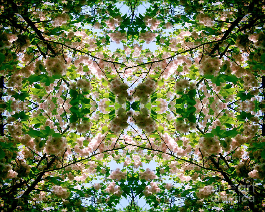 Summer Symmetry by David Hargreaves