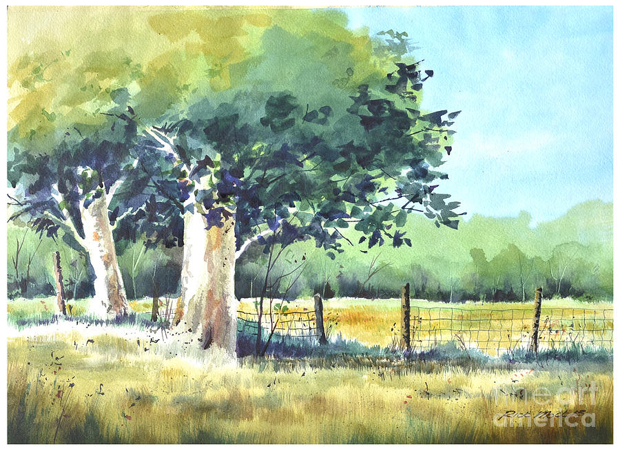 Watercolor Painting Of A Stand Of Trees In Summertime Next To A Fence Line Painting - Summer Trees by Rick Mock
