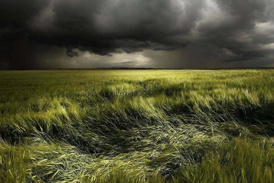 Summer Weather Photograph By Franz Schumacher